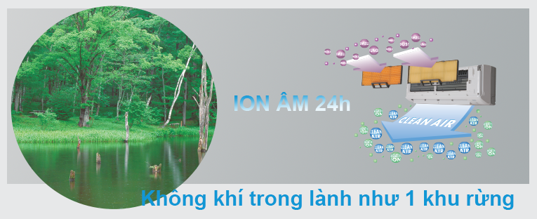 ion-am-24h